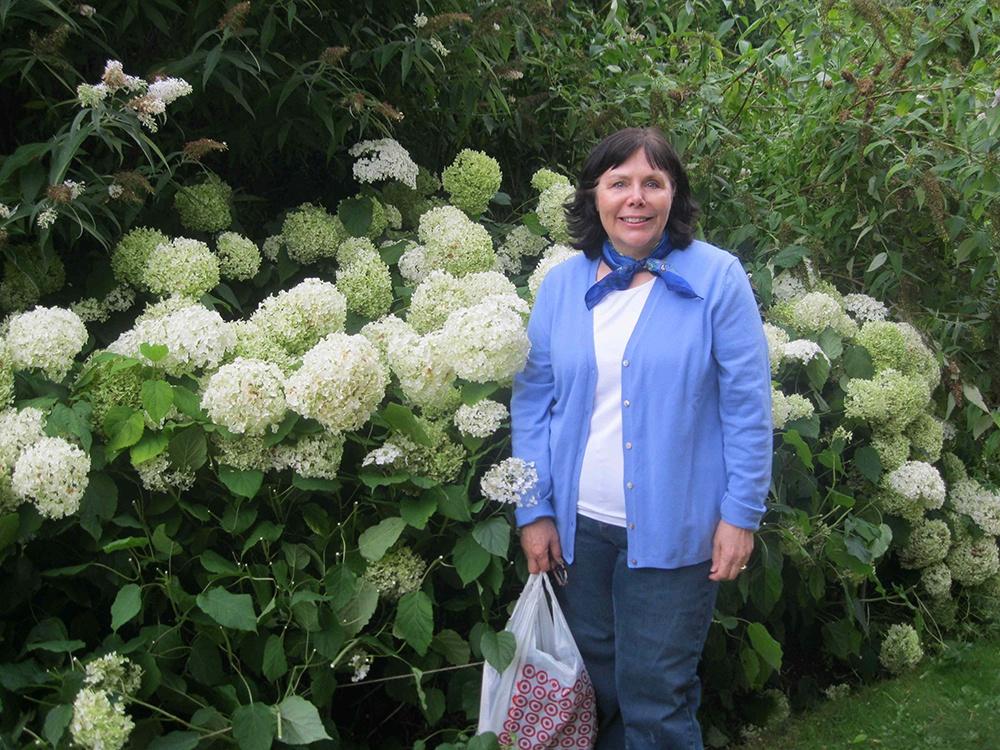 Hydrangeas in the all white garden at Highclere