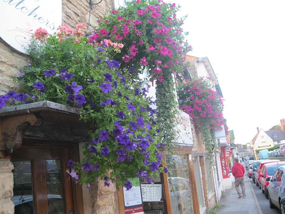 Beautiful flowers in one of the villages of the Cotswolds